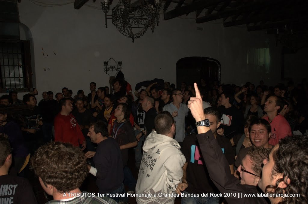 A TRIBUTOS 1er Festival Homenaje a Grandes Bandas del Rock 2010 - DSC_0252.jpg