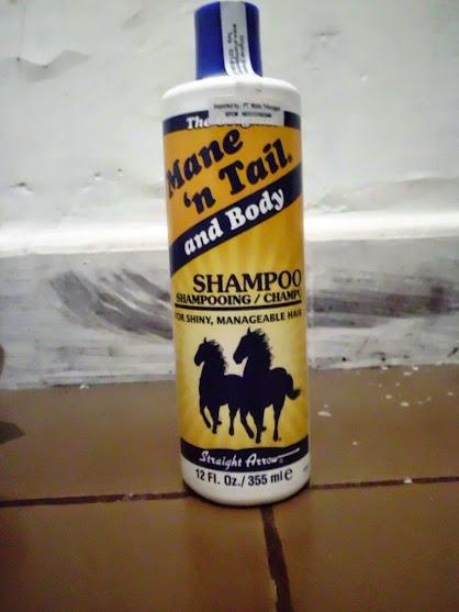 Shampo Kuda Ini
