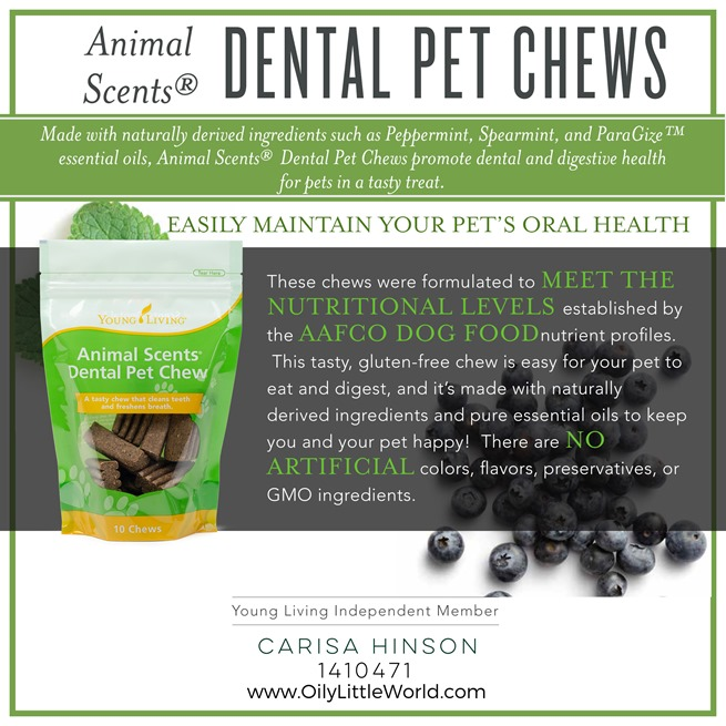 10-Animal-Scents-Dental-Pet-Chews