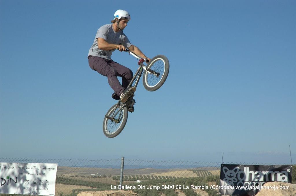 Ballena Dirt Jump BMX 2009 - BMX_09_0065.jpg