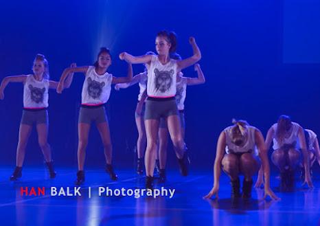 Han Balk Voorster Dansdag 2016-4610-2.jpg