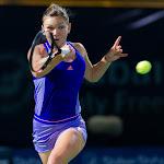 Simona Halep - Dubai Duty Free Tennis Championships 2015 -DSC_7454.jpg