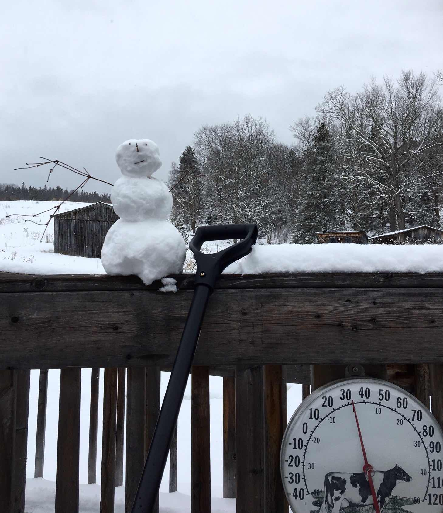 tiny snowman on the railing of a deck with snowy fields behind