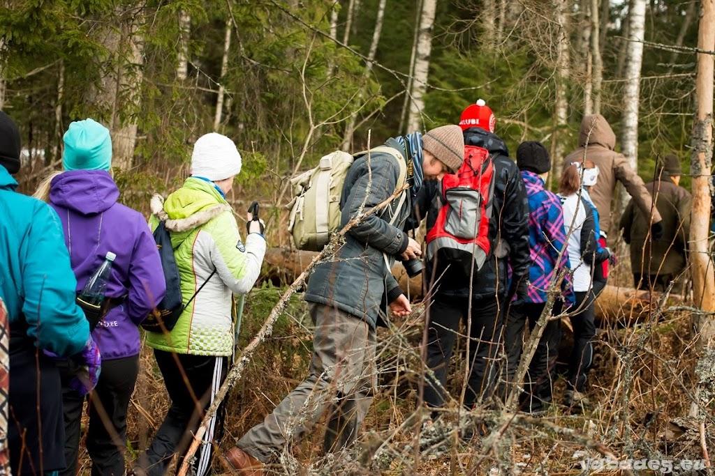 2014.02.24 Elamusretke paraad Koitjärve rabas - AS20140224KOITJARVE_089S.JPG