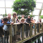 Botanická zahrada 2013 058.jpg