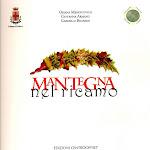copertina Mantegna nel Ricamo.jpg