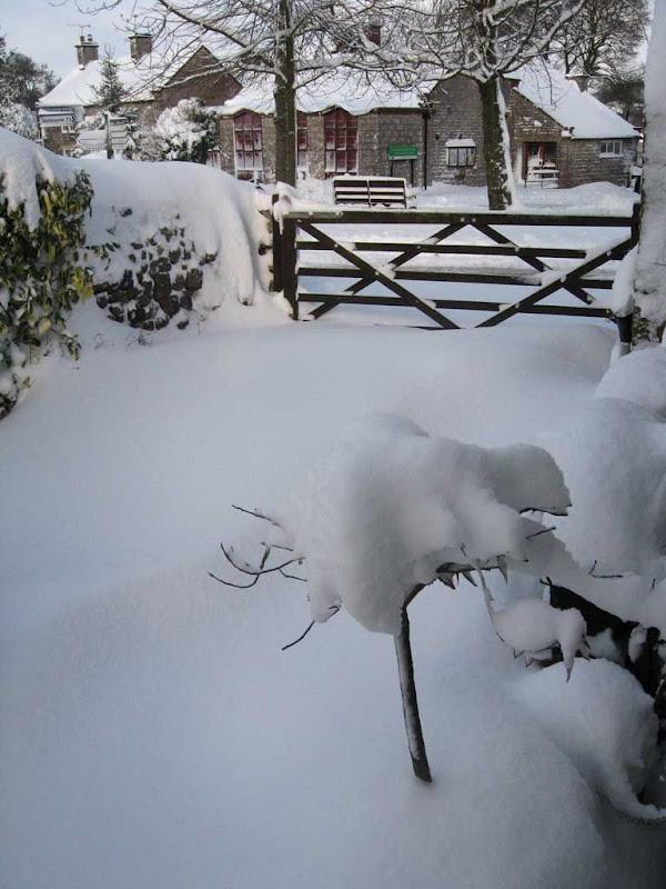 SnowBR1