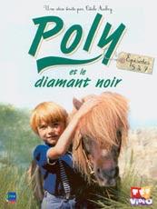 Les enquetes de poly dvd zone 2 876820792 ml