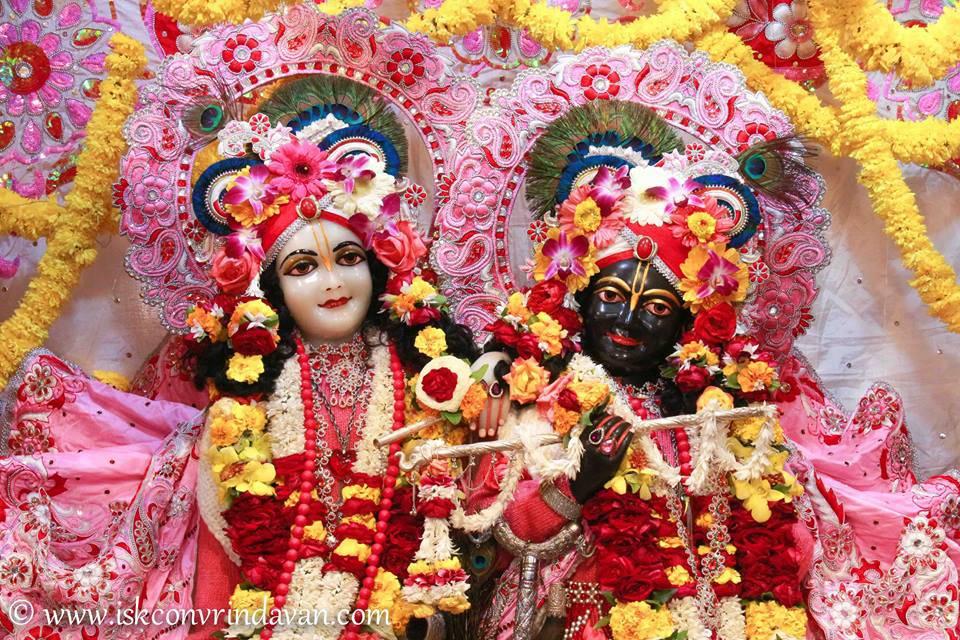 ISKCON Vrindavan Sringar Deity Darshan 06 Jan 2016 (20)