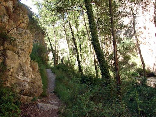 Camino Natural del Guadalviar