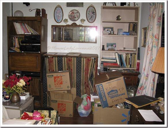 08-08-liv-rm-chaos2