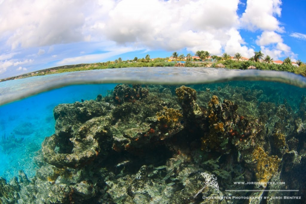 Bonaire: Vista de la costa