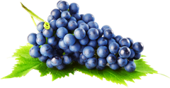 Grapes-Improve-blood circulation-Mystylespots
