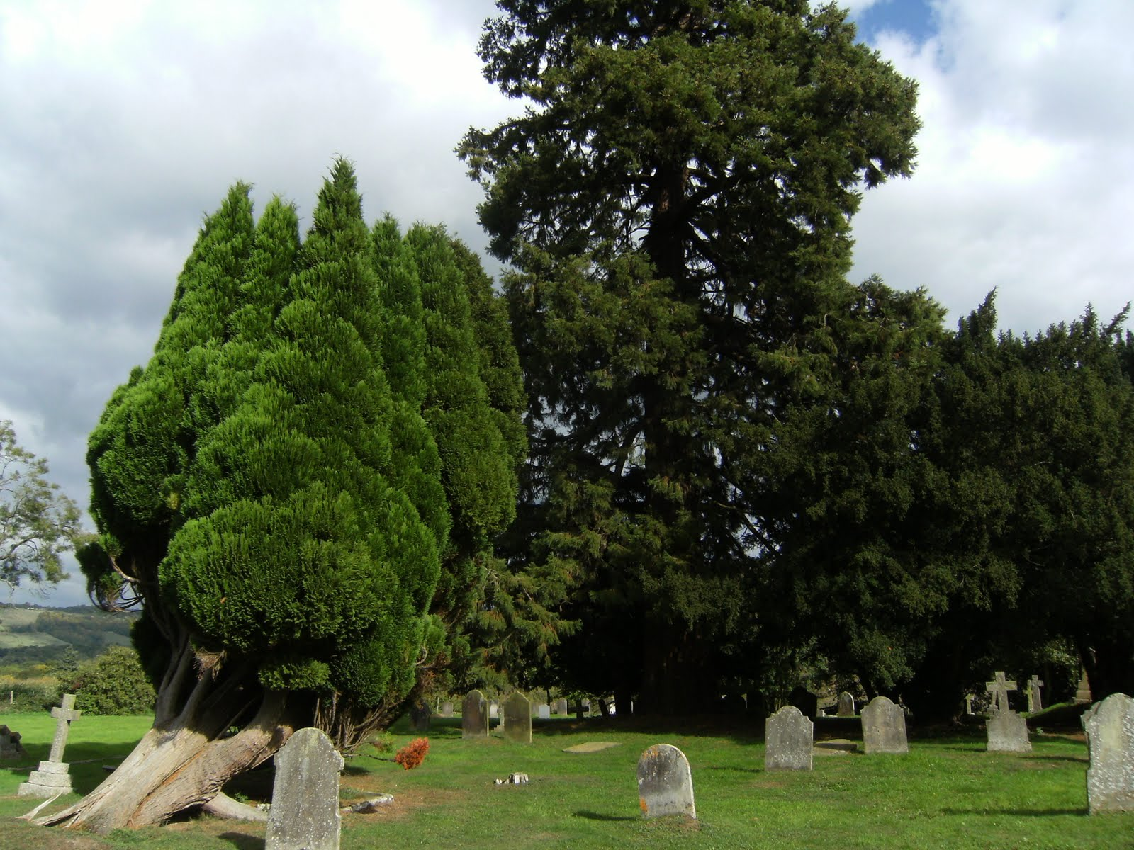 1009250010 St John the Evangelist churchyard