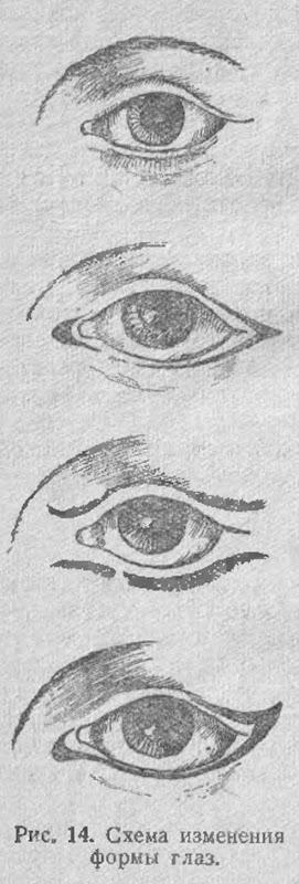 Схема изменения формы глаз