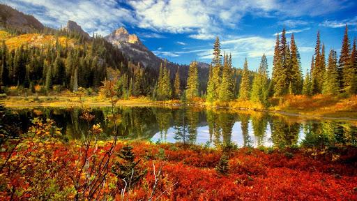 Fall in the Tatoosh Wilderness, Mount Rainier National Park, Washington.jpg