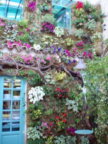 restaurant Casacri saint tropez mai 2006