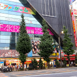 AKB48 promotion store in Akihabara in Akihabara, Tokyo, Japan