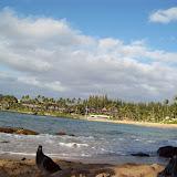 Hawaii Day 7 - 100_7959.JPG