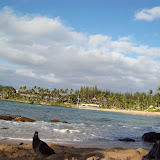 Hawaii Day 7 - 100_7959.JPG
