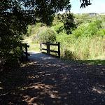Timber footbridge on the coastal track in Caves Beach (387611)