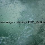 DSC_2056.thumb.jpg