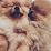 Izzy Belle's profile photo
