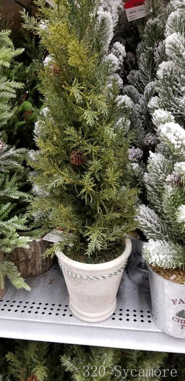 [cedar+tree%5B3%5D]