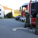 2014-07-19 Gruppenübung Mistlberg 4_TLF (15).JPG