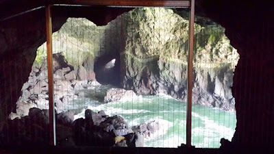 The Sea Lion Caves, the World's Largest Sea Cave located 11 miles north of Florence, Oregon