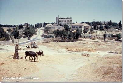Threshing floor in Jerusalem, Sheikh Jarrah, with Ambassador Hotel, mat23102