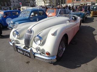 20160313.040 Jaguar