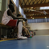 Basket 527.jpg
