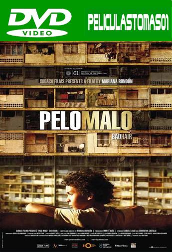 Pelo malo (2013) DVDRip