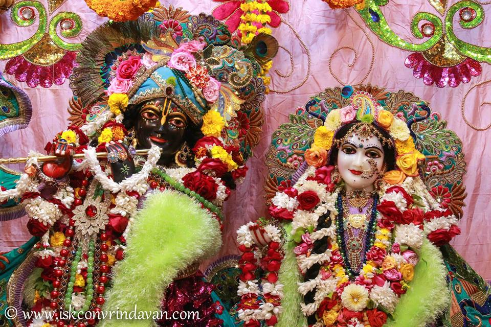 ISKCON Vrindavan Sringar Deity Darshan 15 Jan 2016  (1)
