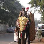 Procession au coeur de Delhi