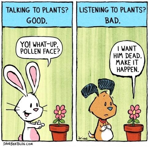 Falar com plantas.