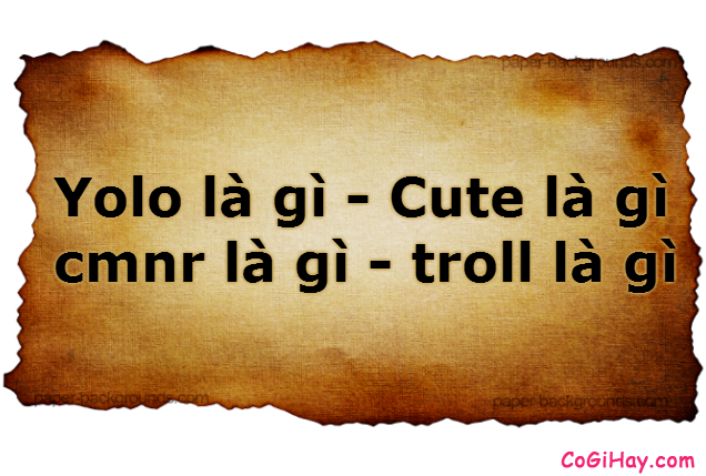giải nghĩa Yolo là gì - Cute là gì - cmnr là gì - troll là gì