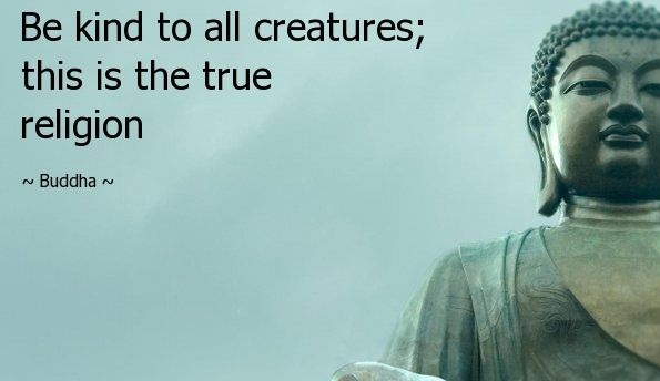 Buddha Quote On Life Endearing 51 Best Buddha Quotes With Pictures About Spirituality & Peace