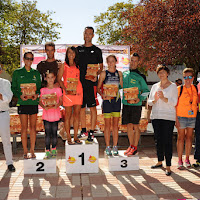 Media de Alcázar 2017 - Trofeos