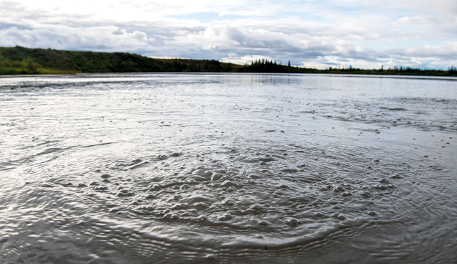 Methane bubbles up from the bottom of Esieh Lake, Alaska. Photo: Jonathan Newton / The Washington Post