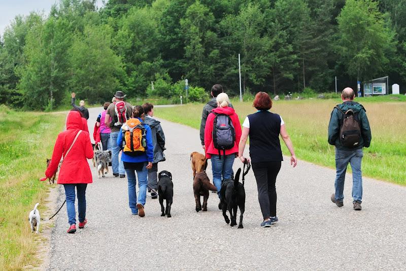 20130623 Erlebnisgruppe in Steinberger See (von Uwe Look) - DSC_3673.JPG