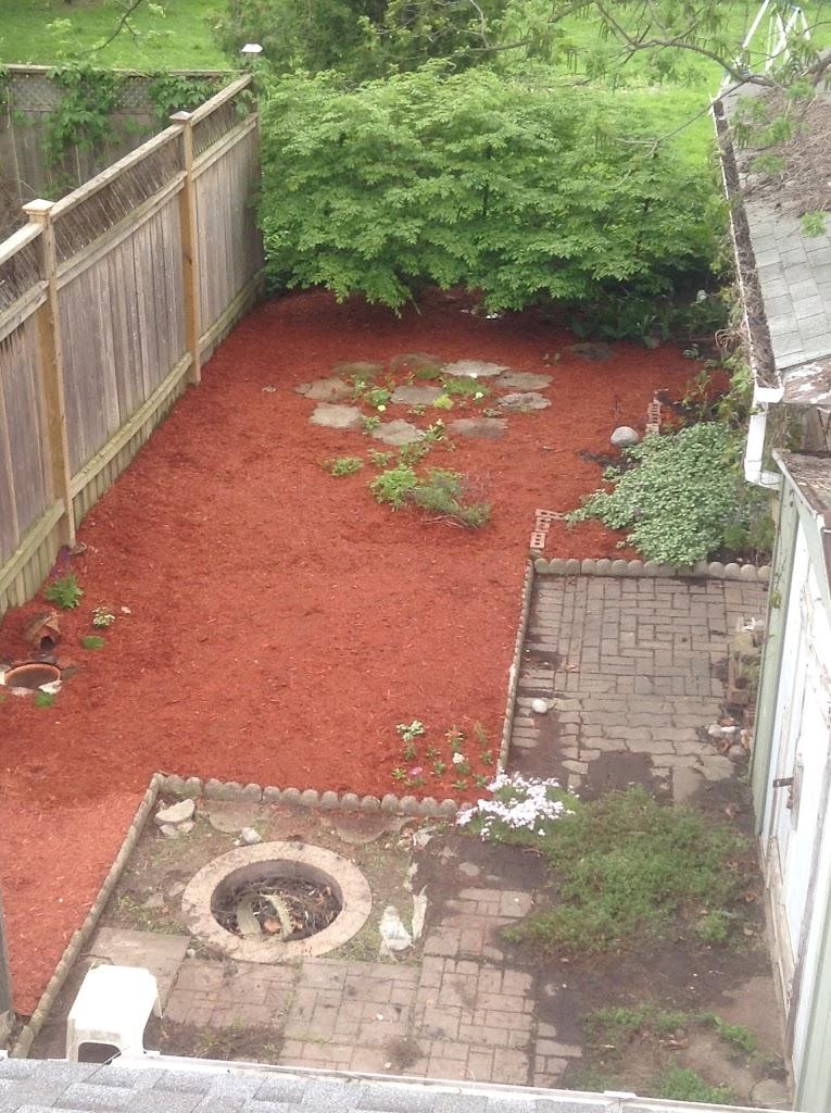 Back Garden Rejuvenation