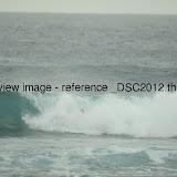_DSC2012.thumb.jpg