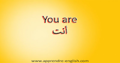 You are أنت