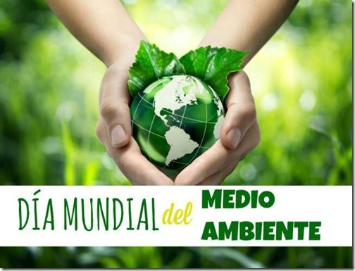 dia del medioambiente (29)