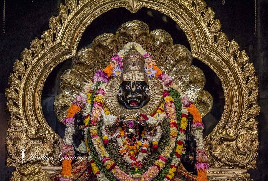 ISKCON Mayapur Deity Darshan 08 April 2016 (10)