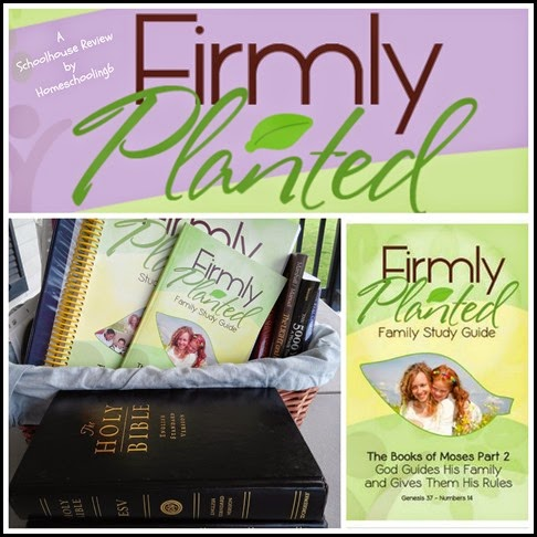 Firmly Planted Review