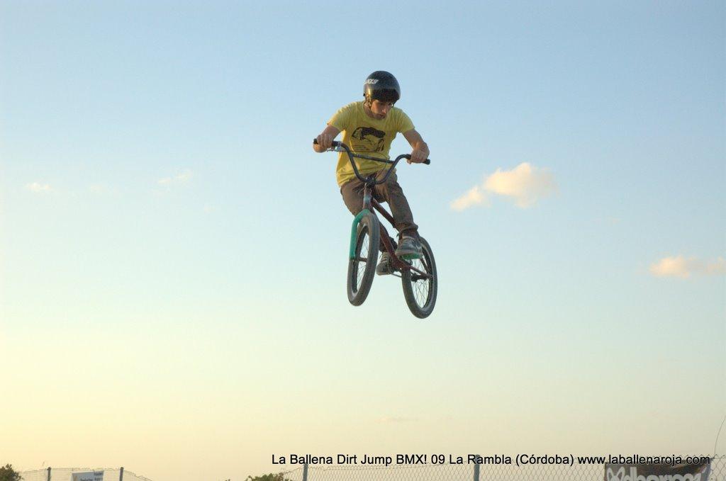 Ballena Dirt Jump BMX 2009 - BMX_09_0148.jpg