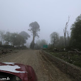 Entrando na Floresta Encantada - Huilo Huilo, Chile